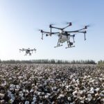 Drones Plant 40,000 Trees In A Month