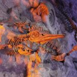 How Do Scientists Determine the Ages of Fossils?
